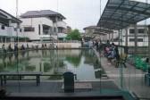 淡水魚水族館も同時オープンン (1)