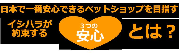 日本で一番安心できるペットショップを目指すイシハラが約束する3つの安心とは?